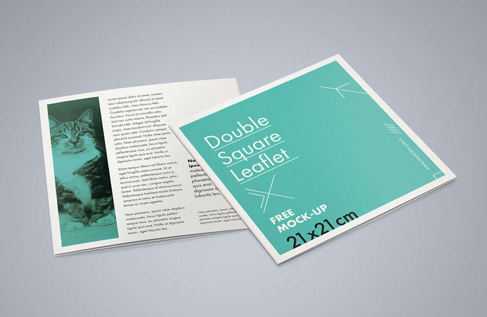 Double square leaflet Free PSD mockup
