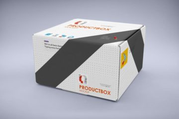 Big Carton Box Mockup