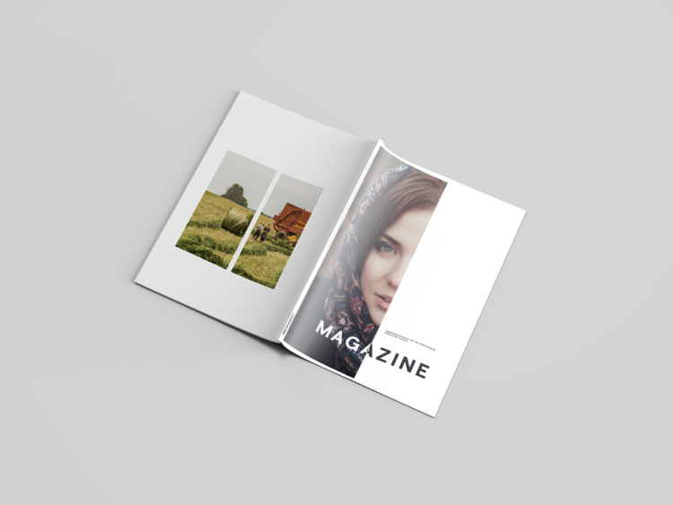 50 Best Free Magazine And Book Cover Psd Mockup Templates